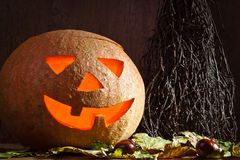 Pumpkins and witches'-broom Royalty Free Stock Image