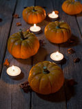 Pumpkins on a Wood Floor Royalty Free Stock Photography