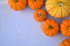 Pumpkins on wooden background Stock Images
