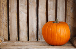 Pumpkins in wooden box Stock Image