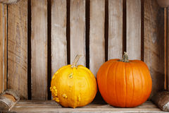 Pumpkins in wooden box Royalty Free Stock Image