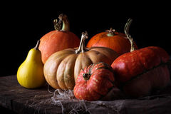 Pumpkins on wooden table in dark background. Selective focus Stock Photography