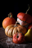 Pumpkins on wooden table in dark background. Selective focus Stock Image