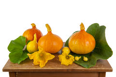 Pumpkins on a wooden table. Pumpkins and flowers on a wooden table Stock Photo
