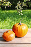Pumpkins on wooden table in the garden Stock Photo