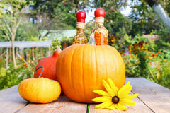 Pumpkins on wooden table in the garden Royalty Free Stock Images