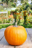Pumpkins on wooden table in the garden Royalty Free Stock Photo