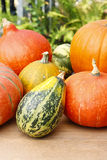 Pumpkins on wooden table in the garden Stock Image