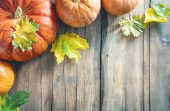 Pumpkins on wooden table. Happy Thanksgiving Day! Autumn feast. Celebrate holidays. Pumpkins on wooden table stock photo