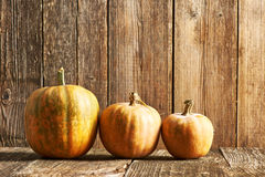 Pumpkins on wooden table Royalty Free Stock Image
