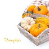 Pumpkins in wooden tray, isolated on white Royalty Free Stock Photos