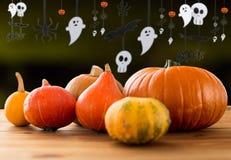 Pumpor och halloween partigirland Royaltyfria Foton