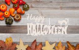Pumpor och nedgångsidor på träbakgrund halloween isolerad white för höst begrepp Royaltyfria Bilder