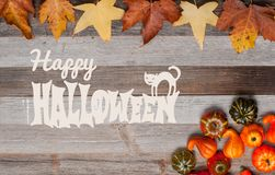 Pumpor på träbakgrund halloween isolerad white för höst begrepp Arkivfoto