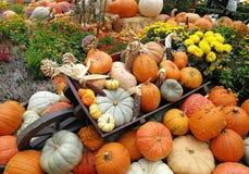 pumpor vid halloween i ämbetsdräkter Arkivfoto