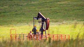 Pumpstålar i grönt fält Royaltyfri Fotografi