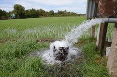 Pumpvatten Arkivfoto