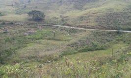 Punagala Bandaraewla väg Fotografering för Bildbyråer
