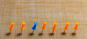 Punaise stationnaire et bleue dans la rangée avec l'orange, concept pour la différence, individualité, direction Copiez l'espace  Photographie stock libre de droits