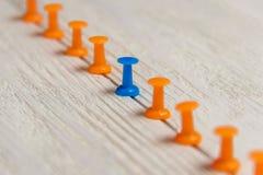 Punaise stationnaire et bleue dans la rangée avec l'orange, concept pour la différence, individualité, direction Vers le bas caté Photo libre de droits