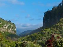 Punakaiki River Valley dans Paparoa NP, Nouvelle Zélande Photo stock