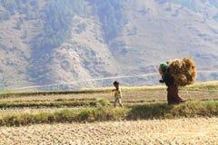 Punakha, Bhután - 7 de noviembre de 2012: El llevar no identificado de la mujer imagen de archivo libre de regalías