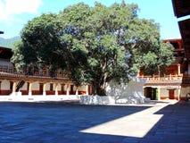 Punakha Dzong, Μπουτάν στοκ φωτογραφία