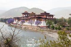 Punakha dzong Stock Image