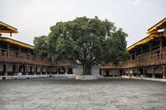 Punakha Dzong, Bhutan Zdjęcie Stock