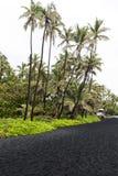 Punaluu黑色沙子海滩,夏威夷 图库摄影