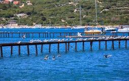 Punat, Kroatien Lizenzfreie Stockfotos