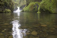 Punch Bowl Falls in Oregon Forest Wilderness stock images