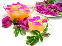 Punch cocktail tea drink with wild rose Royalty Free Stock Photos