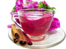 Punch cocktail tea drink with wild rose Stock Image