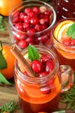 Punch with cranberries and orange royalty free stock image