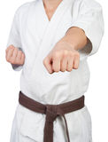 Punch in karate. Beat in karate, sharpness on the fist Stock Photo