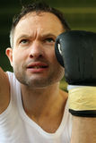 Punch Training Royalty Free Stock Photography
