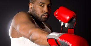 Big Hard Boxer Puncher Spar Fight Red Gloves royalty free stock photo