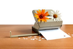 Puncheren för papper Arkivbild