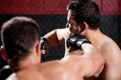 Punching ένας αντίπαλος κατά τη διάρκεια μιας πάλης στοκ εικόνες με δικαίωμα ελεύθερης χρήσης