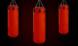 Punching bag Stock Photography