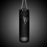 Punching bag Stock Photo