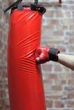 Punching Bag Exercises Royalty Free Stock Photo
