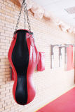 Punching bag Stock Image