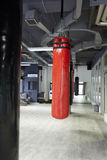 Punching bags in a gym Stock Image