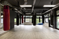 Punching bags in modern gym Royalty Free Stock Photography