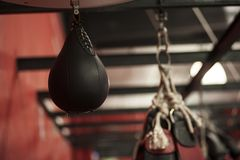 Punching-ball Immagine Stock