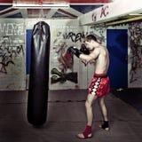 Punching boxer Royalty Free Stock Photo