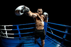 Punching boxer on boxing ring Royalty Free Stock Images