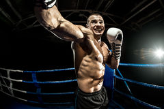 Punching boxer on boxing ring Stock Images
